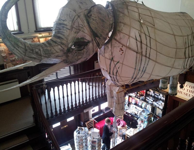 Barnstaple Museum elephant